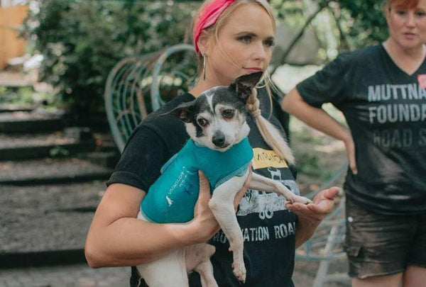 Miranda Lambert Helps Makeover of Sanctuary for Elderly Dogs
