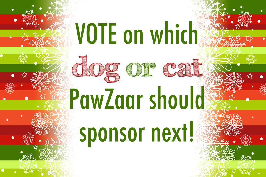 Which Pet Should We Sponsor Next?
