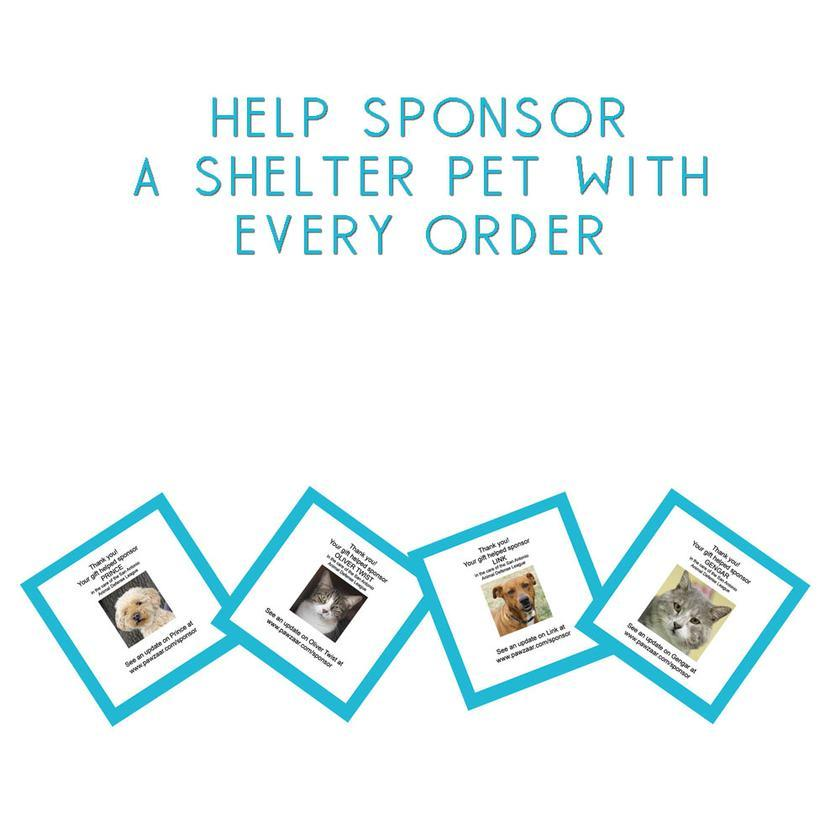 shelter pet toy drive!