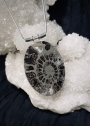 Ancient's Wisdom Pyritized Ammonite Pendant
