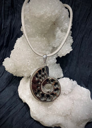 Spiral of Creation Pyritized Ammonite Pendant