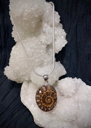 The Golden Ratio Ammonite Pendant