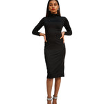 Long sleeve Turtle Neck Dress