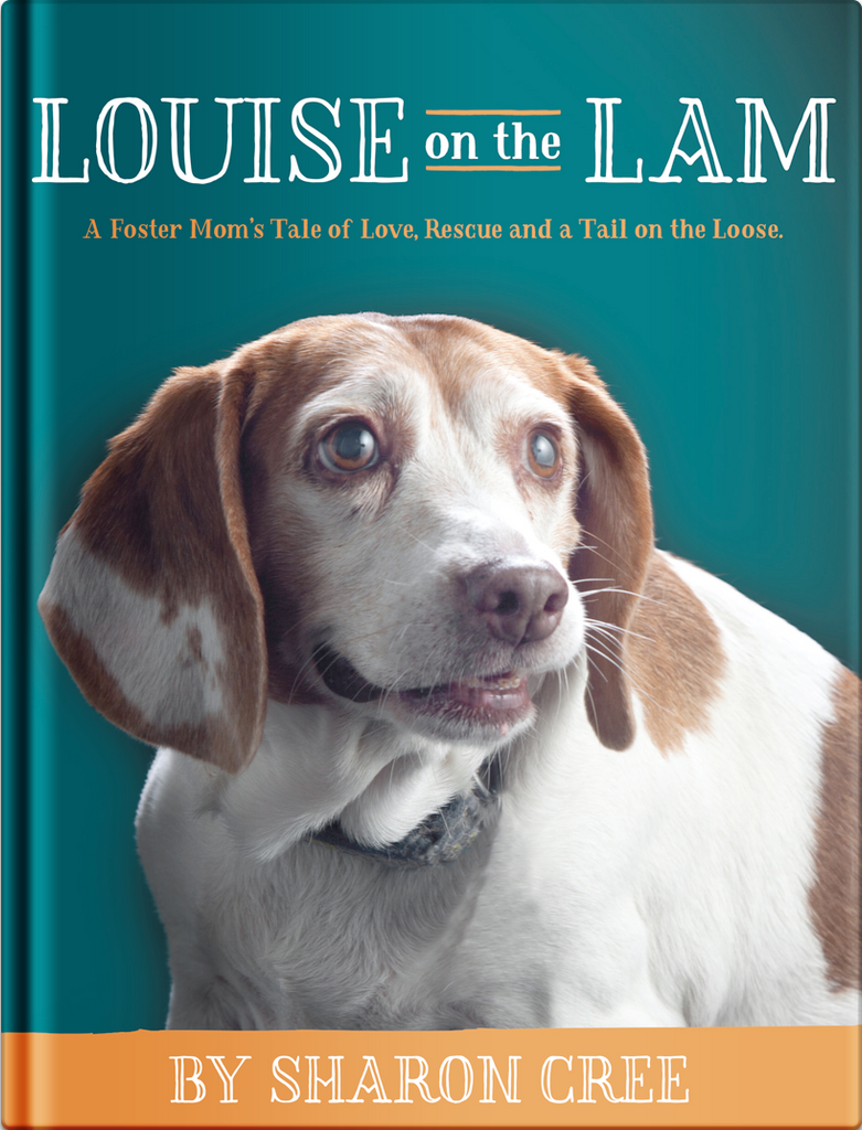 Louise on the Lam