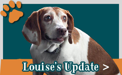 Louise's Update