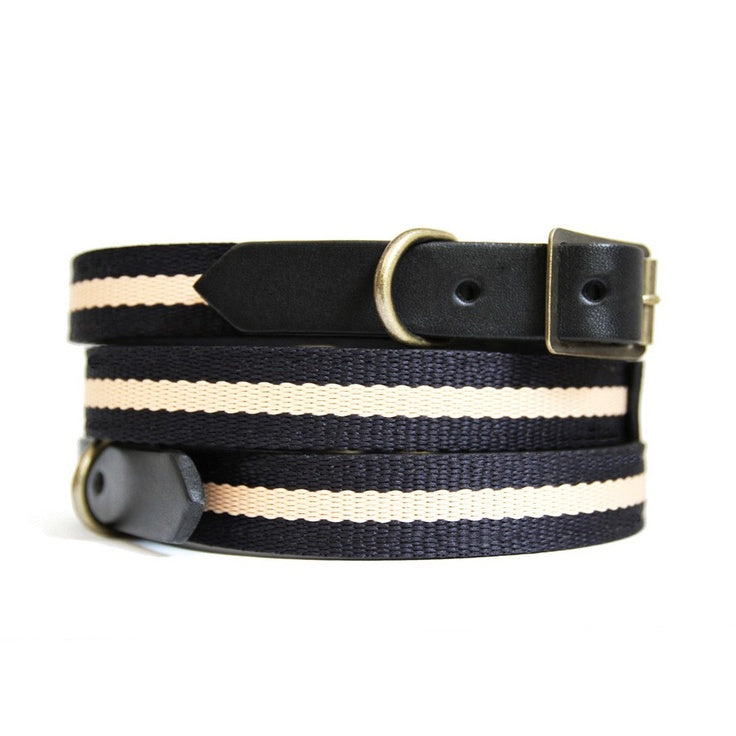 Best In Park Dog Collar