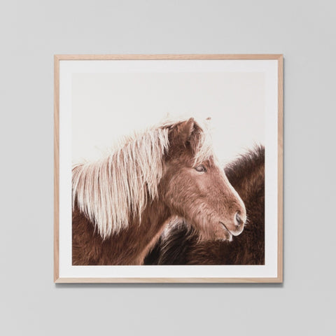 Blonde Pony Art Print