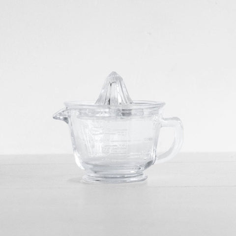 Glass Juicer and Jug