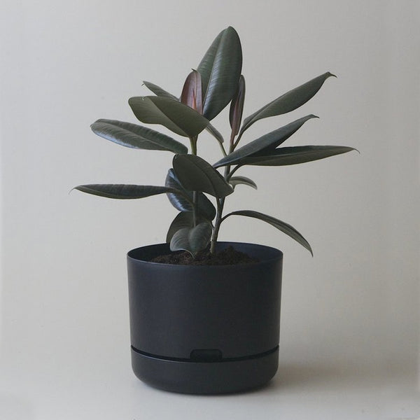 MR KITLY x Decor Selfwatering Plant Pot Recycled Black
