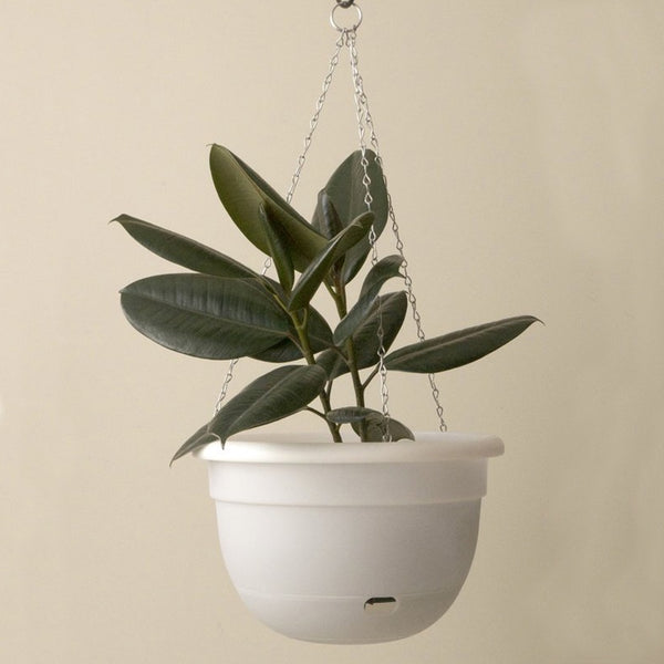 MR KITLY x Decor Self watering Hanging Pot