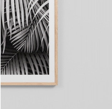 Black & White Palm Art Print 114cm x 85cm