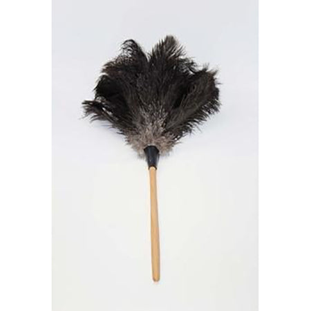 Feather Duster 500mm Brown
