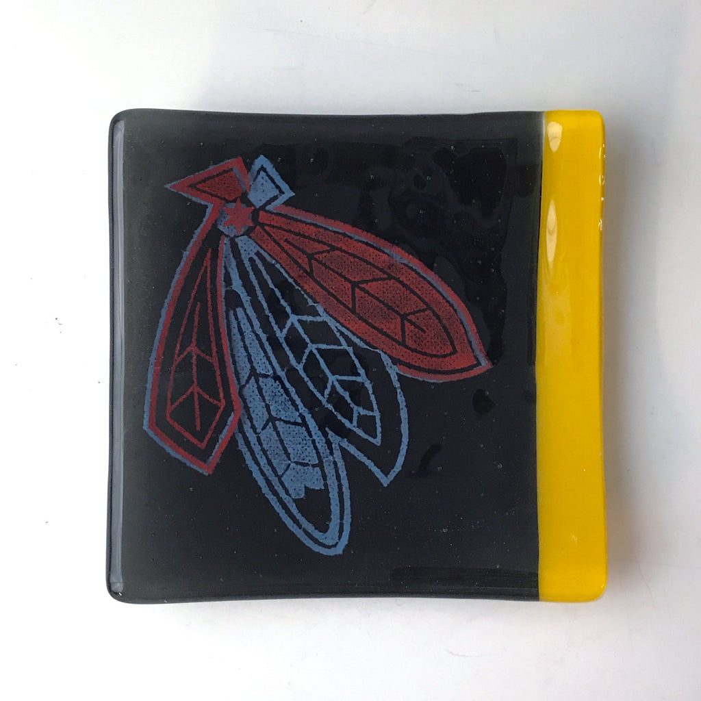 Chicago Hawks Feathers Catch-all