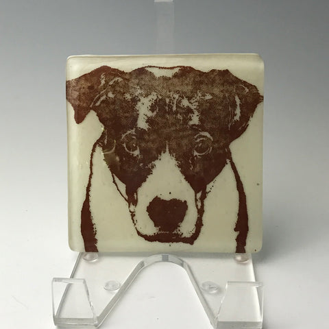 Bully Dog Single Coaster
