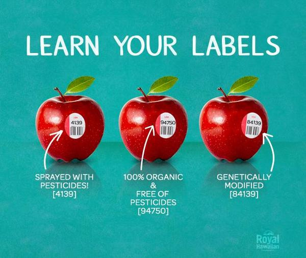 Learn Your Labels