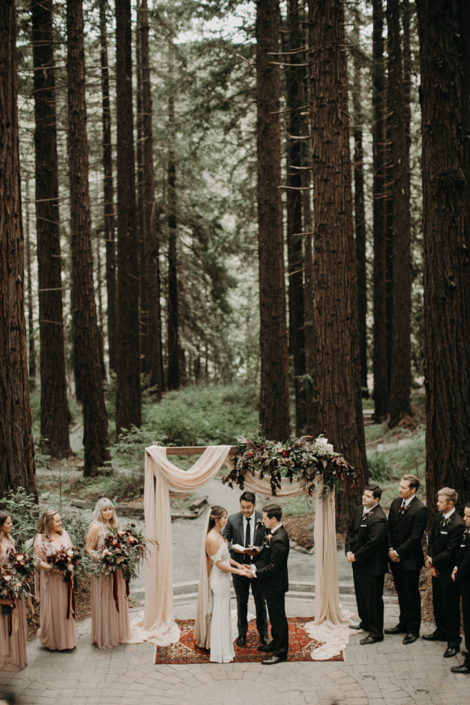 The Gorgeous Redwoods in the grove. Photo by From the Daisies.