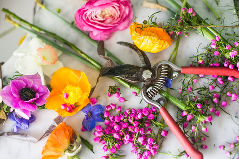 Floral sheers on flowers for a photoshoot by Gorgeous and Green