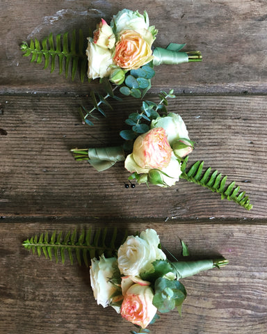 sweet boutonnieres with blush and cream and ferns by Gorgeous and Green