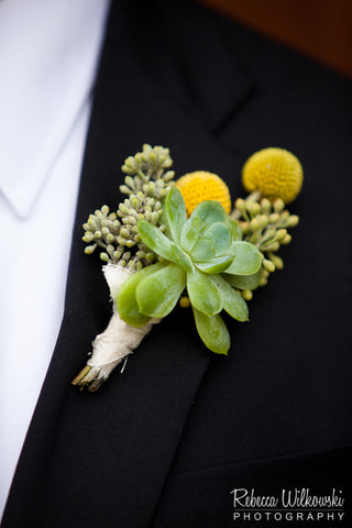 Succulent and crespedia boutonniere by Gorgeous and Green