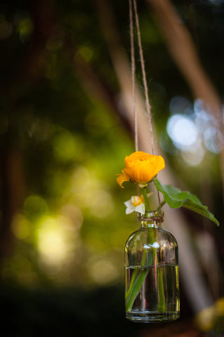 hanging bottles with blooms for the ceremony area at the Mill Valley Outdoor Art Club, by Gorgeous and Green