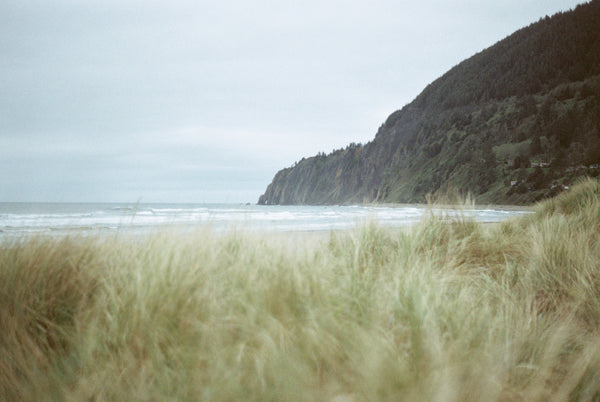 film photo of Manzanita Beach by Anne Blodgett