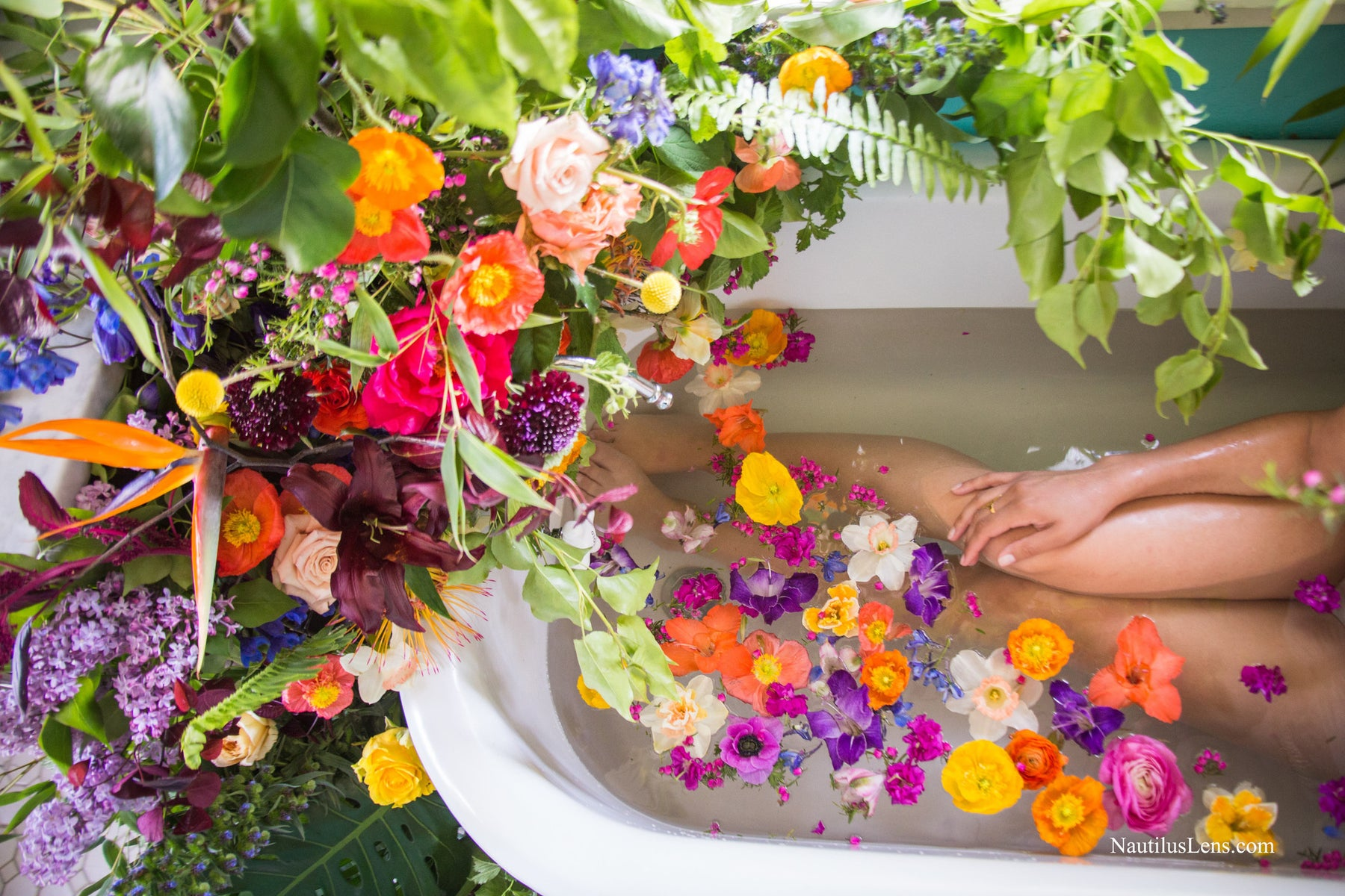 Colorful floating blooms in the bathtub with a forest of flowers