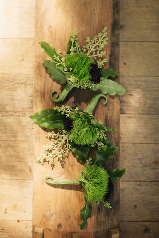 mossy boutonnieres by Gorgeous and Green for a Calistoga Wedding