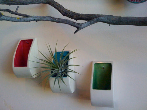 JFish Porcelain airplant holders