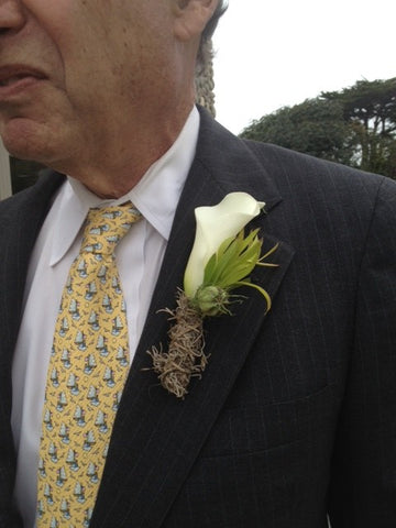A simple calla boutonniere with spanish moss by Gorgeous and Green, for a wedding in Santa Cruz