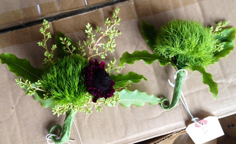 Mossy dianthus for a boutonniere by Gorgeous and Green, wedding in the Redwoods