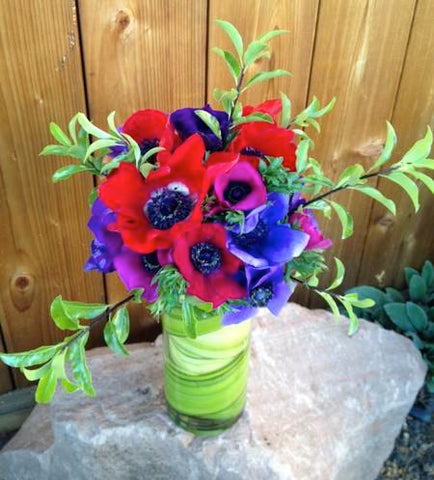 Local Grown anemones