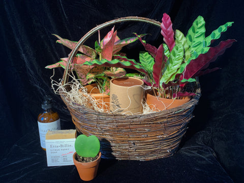 Grow Things Gift Basket, Available Next Day Mon-Fri
