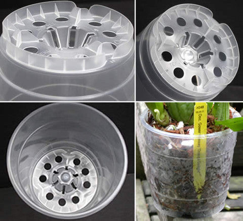 10 units of Phalaenopsis pot clear 115mm Teku