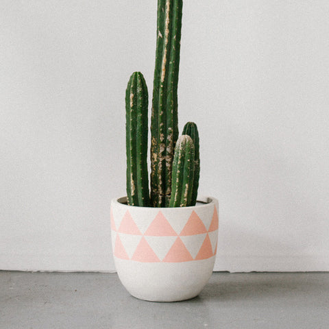 POP & SCOTT - POT PINK AZTEC SML