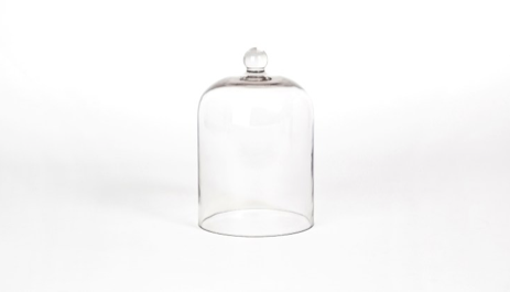 Palm Beach Glass Cloche