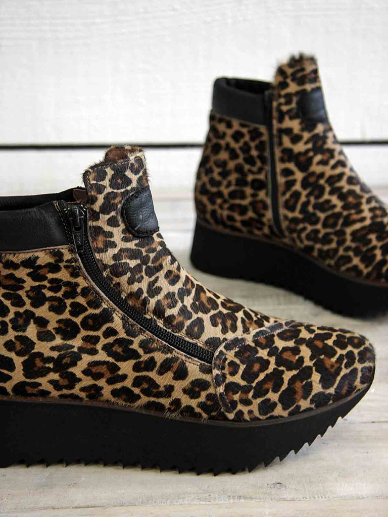 New Autumn Arrivals - Lofina Leopard Print Ankle Boots at Blue
