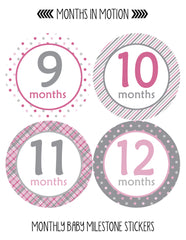 Monthly Baby Stickers Baby Girl Months 1-12 Milestone Sticker - Monthly Baby Sticker