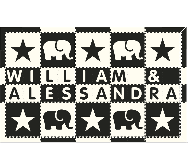 William & Alessandra IC Elephants Stars BW 6x10