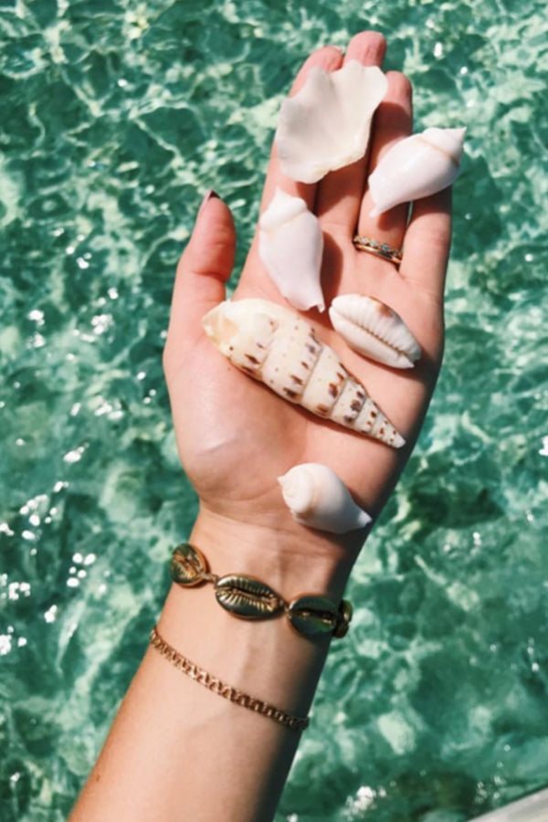 The Gold Cowrie Bracelet