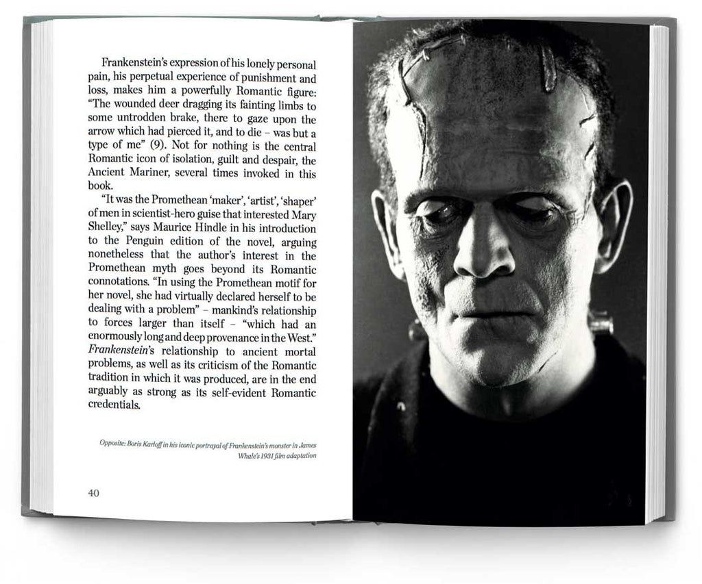 Mary Shelly's Frankenstein Study Guide
