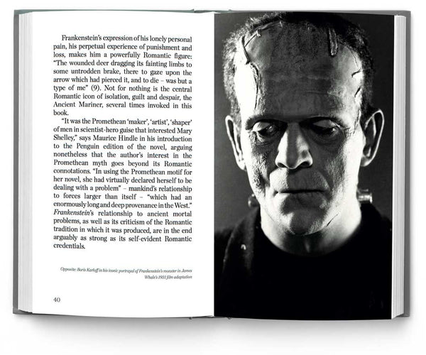 a brief analysis of the story of frankenstein a novel by mary shelley Frankenstein, feminism, and literary theory  one book frankenstein has so overshadowed mary shelley's other  acceptance,,6 poovey's analysis focuses on shelley's.