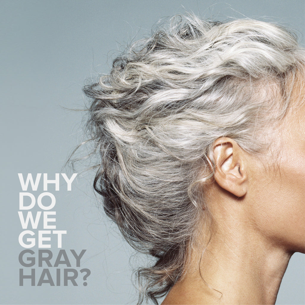 WHY DO WE GET GRAY HAIR?
