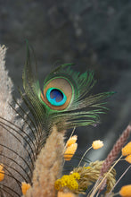 Load image into Gallery viewer, Peacock - last one in stock!