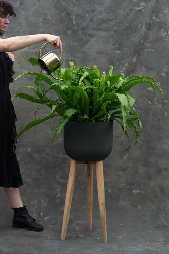 Dark green fibrestone pot on wood legs - grow your plants to new heights!