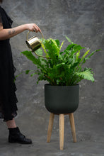 Load image into Gallery viewer, Gold watering can - maintain your plants in style!
