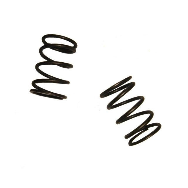 Honda GX160 5.5 hp VALVE SPRING SET OF 2 FITS 5.5HP