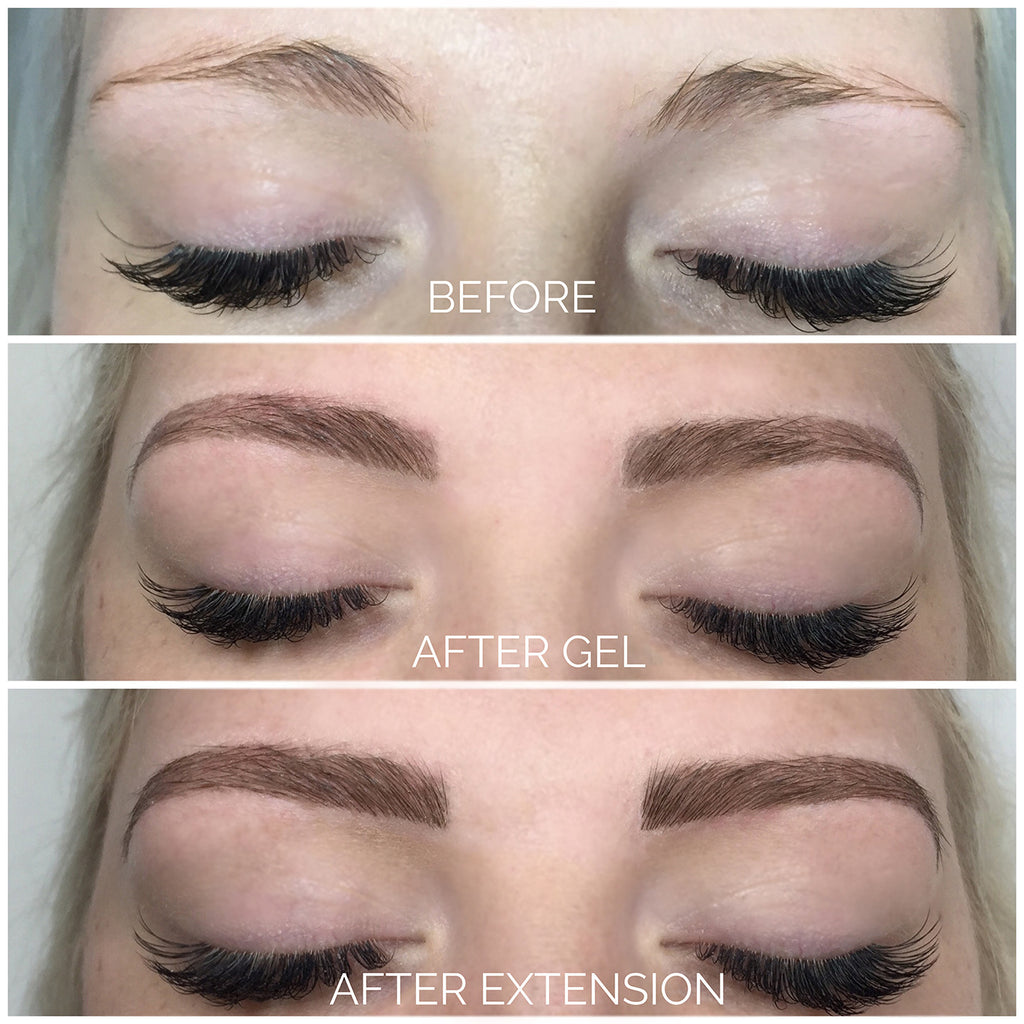 Eyebrow Sculpting Kit Eyebrow Extension Online Training Blink