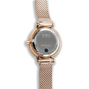 Amesbury Rose gold mesh watch with genuine Picasso Jasper