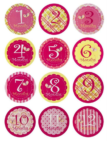 Evergreen Enterprises 7BS012  Baby First Year Belly Stickers - Girl