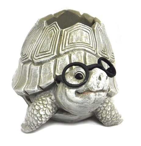 Roman 10094 Woodland Critters with Eye Glasses Novelty Planters (Turtle),One Size
